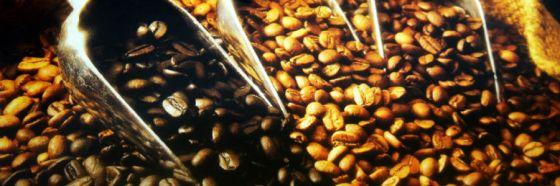 4 curiosidades acerca del café