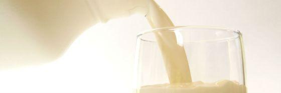 7 mitos sobre la leche