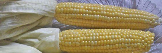 Leche de maíz