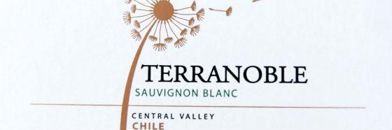 4 vinos a probar de Viña Terranoble