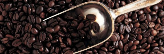 6 curiosidades del café orgánico