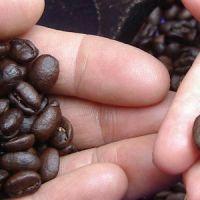 4 formas de tostar café en casa