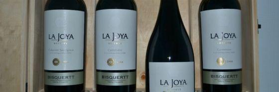 4 destacados vinos tintos de Viña Bisquertt