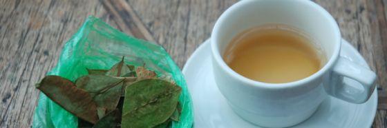 5 tips para conservar el té en estado óptimo