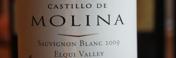 3 razones para probar los vinos del Valle del Elqui