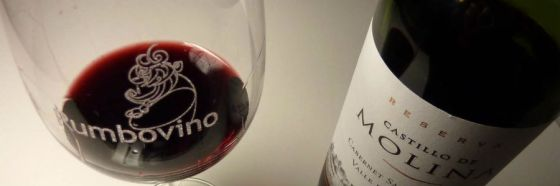 3 razones para probar Castillo de Molina Winemaker's blend