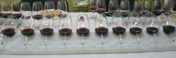 Esnobismo gourmet presenta degustación Vinos y más vinos en Son gourmet
