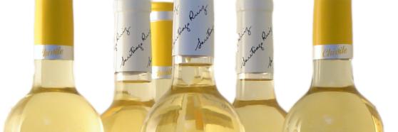 4 uvas blancas españolas que no puedes dejar de conocer