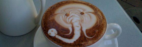 3 curiosidades sobre el café Marfil Negro
