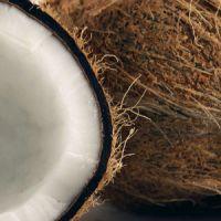 5 maravillosos platos zulianos con coco