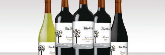 Automercados Plaza's y Alimentos Fusari presentan los vinos de Viña Terranoble en 2 catas