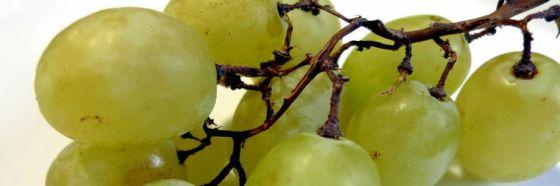 3 tradiciones gastronómicas de Año Nuevo: uvas, aceitunas y lentejas