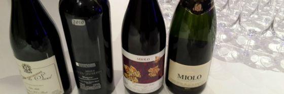 3 razones para probar los vinos brasileños Miolo