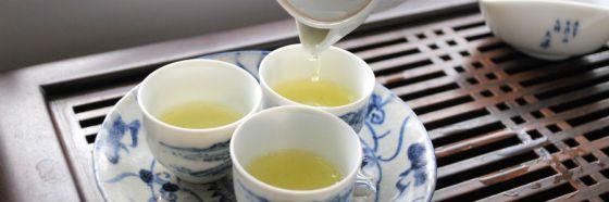 6 clases de TeaLovers
