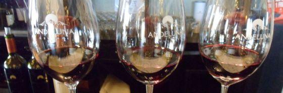 5 vinos argentinos a disfrutar después del malbec
