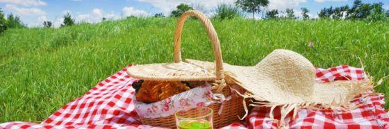 cesta picnic comida al aire libre