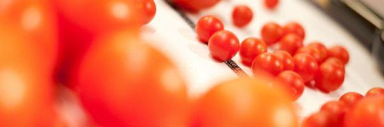 3 curiosidades del origen de la Gastrobotánica