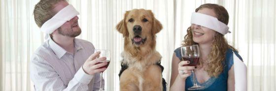 pareja y perro tomando vino couple and dog drinking wine