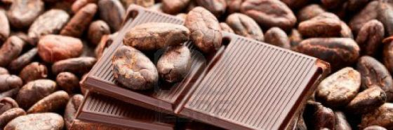 cocoa bean chocolate bar chocco venezuela cavenit