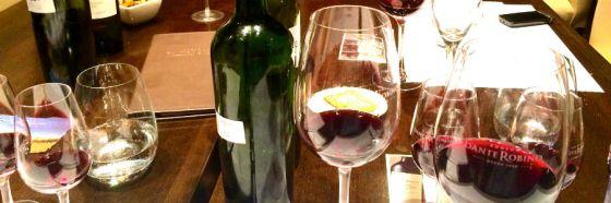 bonarda argentina wine glass