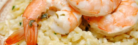creamy shrimp rice