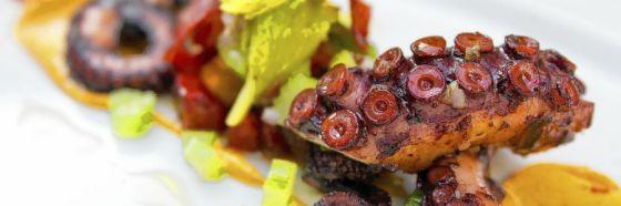 octopus dish