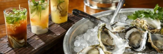 raw oysters cocktail pairing