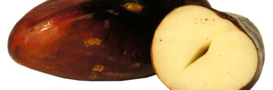 semilla chachafruto