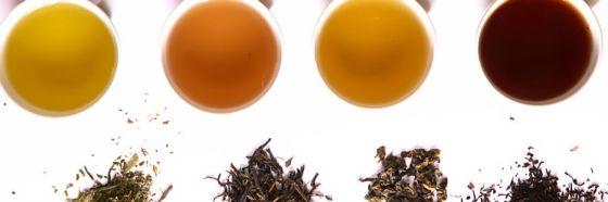 tea cup leaves different fermentation