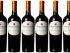 4 razones para brindar con los vinos de ViñaMontGras
