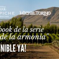 3 razones para descargar el ebook Malbec, un vino que enamora